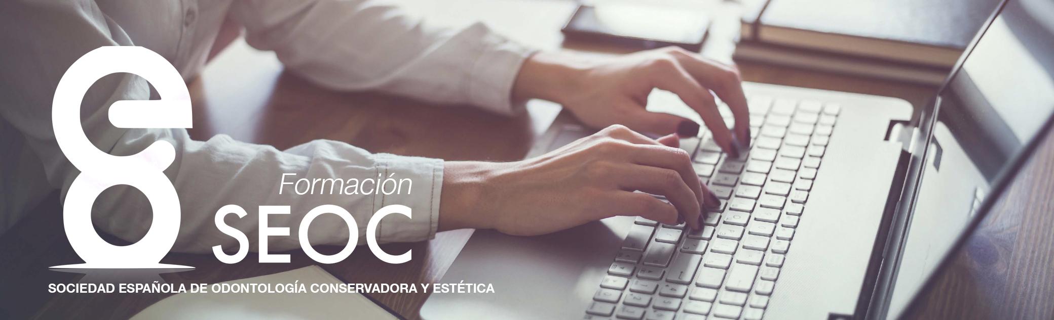 Formación online SEOC